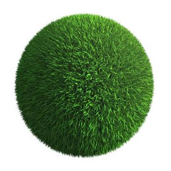 Vejos žolė